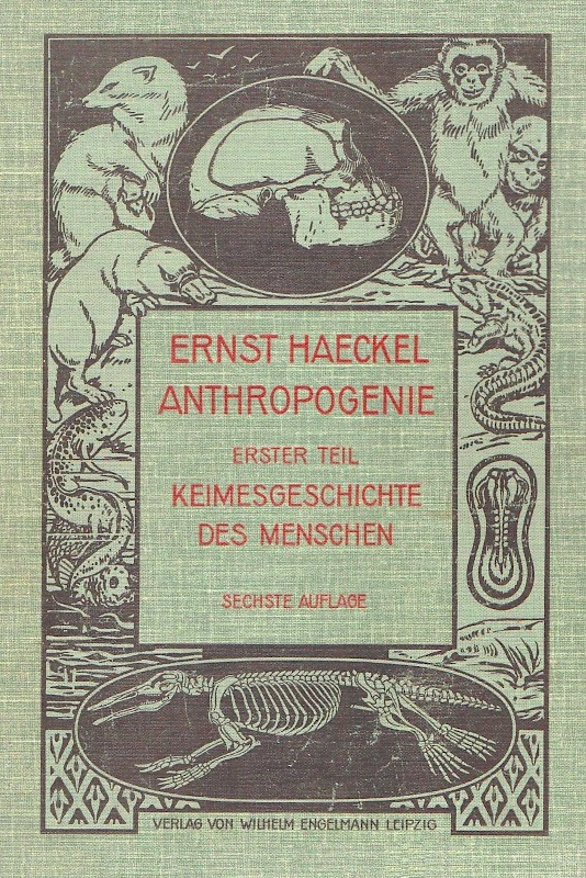 Cover | E. Haeckels Anthropogenie
